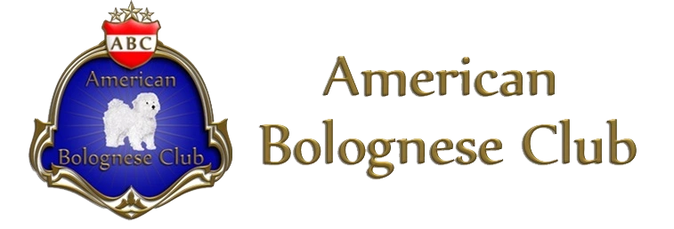 The American Bolognese Club is the AKC recognized club for a Bolognese Breeder